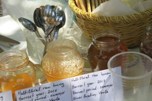 The Honey Hunt – Honey Workshop & Troodos Mountain Villages Food Tour (7hrs) €110pp